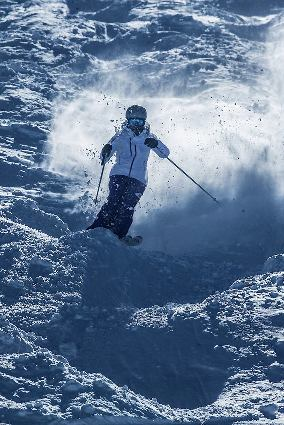 スキー ツイスト動作