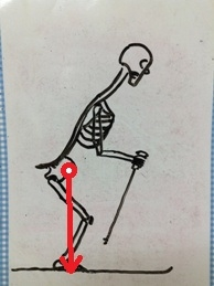 スキー 重心位置